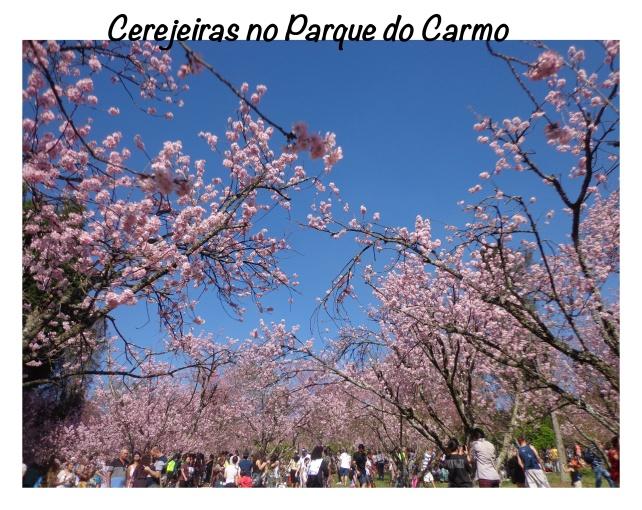 parques-sp-lembrancas-da-gabi-blog