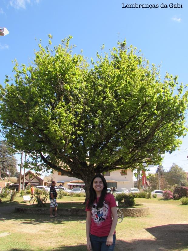 monte-verde-lembrancas-da-gabi-blog-12