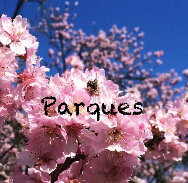 festa-das-cerejeiras-lembrancas-da-gabi-blog03
