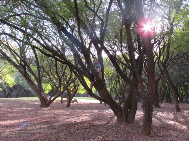 parque-da-juventude-lembrancas-da-gabi08