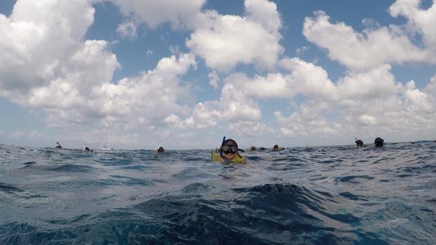 snorkel-em-cozumel-lembrancas-da-gabi-blog1