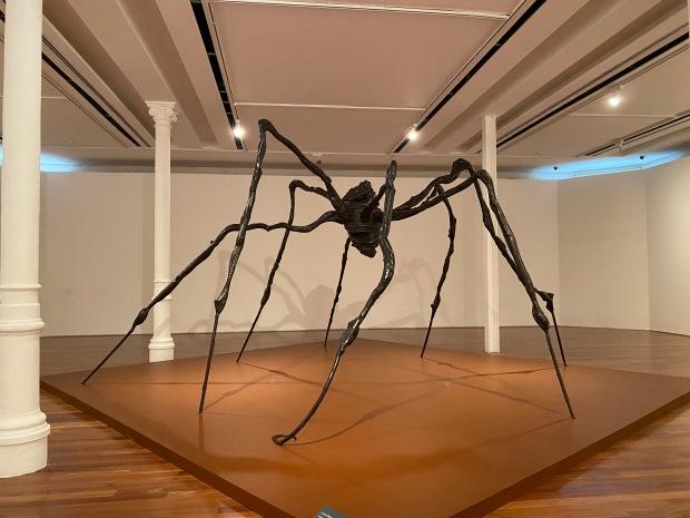 museu-de-arte-rj-lembrancas-da-gabi-blog4